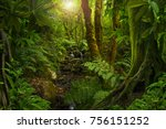 asian tropical rainforest | Shutterstock . vector #756151252