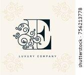 vector graphic elegant logotype ... | Shutterstock .eps vector #756213778