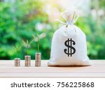 money saving and money bag with ... | Shutterstock . vector #756225868