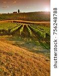 beautiful vineyards at sunset... | Shutterstock . vector #756248788