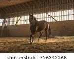 training horse in ranch | Shutterstock . vector #756342568