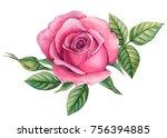 flower roses with leaves ... | Shutterstock . vector #756394885