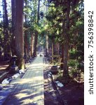 graveyard path on mt. koya san  ... | Shutterstock . vector #756398842