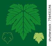 Vector Vine Symmetrical Leaf...