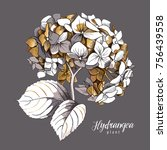 gold hydrangea flower and... | Shutterstock .eps vector #756439558