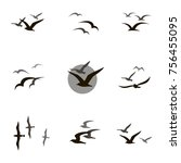 collection of black flying... | Shutterstock .eps vector #756455095