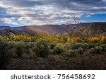 glowing tree in sunbeam  new... | Shutterstock . vector #756458692