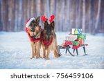 two german shepherd dogs... | Shutterstock . vector #756459106