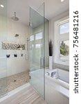 contemporary master bathroom... | Shutterstock . vector #756481216