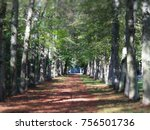 autumn in the gardens of the... | Shutterstock . vector #756501736