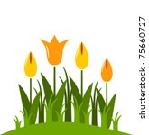 Vector Abstract Tulips On Whit...