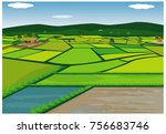 paddy field vector design | Shutterstock .eps vector #756683746