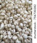 champignons. fresh champignons  ...   Shutterstock . vector #756730282