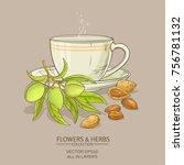 almond tea vector illustration... | Shutterstock .eps vector #756781132