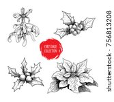 christmas hand drawn plants... | Shutterstock .eps vector #756813208