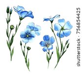 wildflower flax in a watercolor ... | Shutterstock . vector #756854425