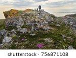 old wooden nenets pagan idol on ... | Shutterstock . vector #756871108