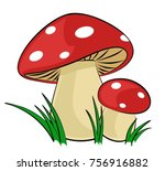 forest mushrooms with a green...   Shutterstock .eps vector #756916882