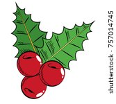 christmas fruits with leaves...   Shutterstock .eps vector #757014745