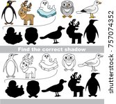 northern animals set to find... | Shutterstock .eps vector #757074352