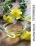 fresh evening primrose flowers... | Shutterstock . vector #757098565