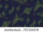 seamless pattern of pine...   Shutterstock .eps vector #757154578