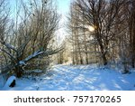 winter landscape with snow | Shutterstock . vector #757170265