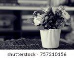 black and white of flower pot...   Shutterstock . vector #757210156