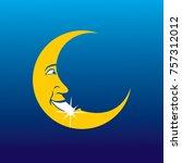 smile moon with a clean teeth   Shutterstock .eps vector #757312012