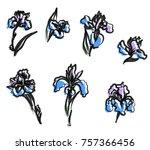 japanese iris flower set.hand... | Shutterstock .eps vector #757366456
