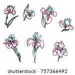 japanese iris flower set.hand...   Shutterstock .eps vector #757366492