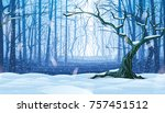 a high quality horizontal... | Shutterstock .eps vector #757451512
