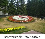 Flower Clock With A Dial From...
