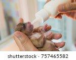 hand of female breast milk for...   Shutterstock . vector #757465582