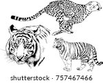 set of vector drawings on the... | Shutterstock .eps vector #757467466