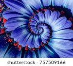 blue camomile daisy flower... | Shutterstock . vector #757509166