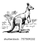 black and white illustration of ... | Shutterstock . vector #757509232