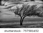 a tree showing the effect of... | Shutterstock . vector #757581652