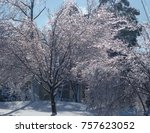 beautiful christmas snowy day    Shutterstock . vector #757623052