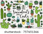 succulents   cacti   terrarium... | Shutterstock .eps vector #757651366