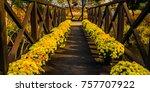 Wooden Footbridge Over A Pond...