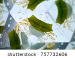 abstract colorful background   Shutterstock . vector #757732606