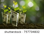 image of bank notes rolled...   Shutterstock . vector #757734832
