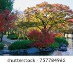 tokyo autumn leaves  | Shutterstock . vector #757784962