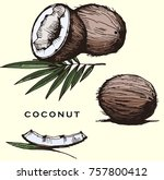 set  with coconut and leaves on ... | Shutterstock .eps vector #757800412