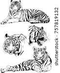 set of vector drawings on the... | Shutterstock .eps vector #757819132