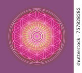 flower of life    colorful ...   Shutterstock . vector #757828282
