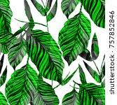 watercolor seamless pattern... | Shutterstock . vector #757852846