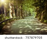 road in green forest with sun... | Shutterstock . vector #757879705