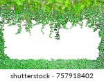 frame from green leaves on... | Shutterstock . vector #757918402
